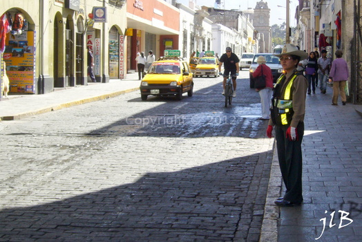2010 Arequipa circulation-5
