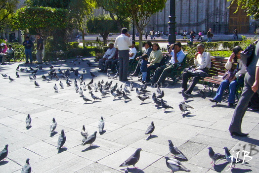 2010 Arequipa ville-29