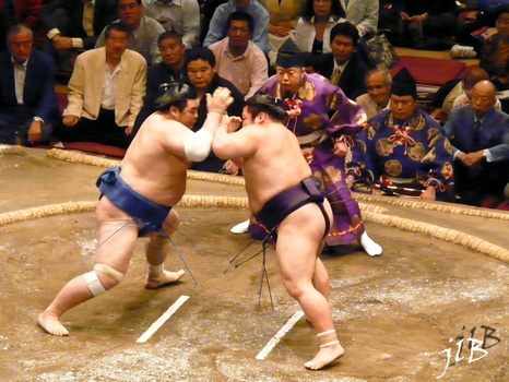 Sumo-9