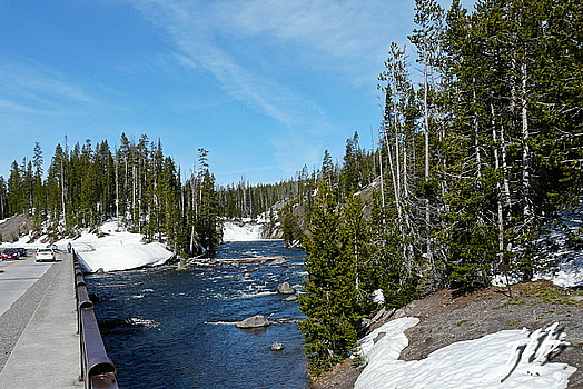 Lac Yellowstone-2
