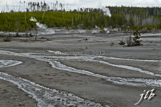 Lower geyser basin-26