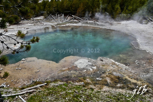 Lower geyser basin-3