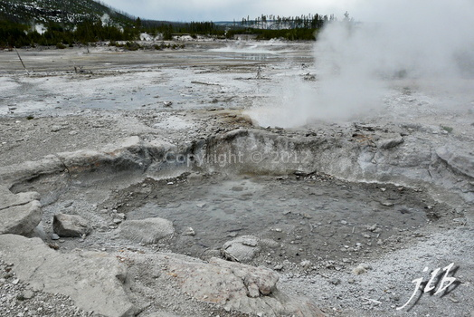 Lower geyser basin-33