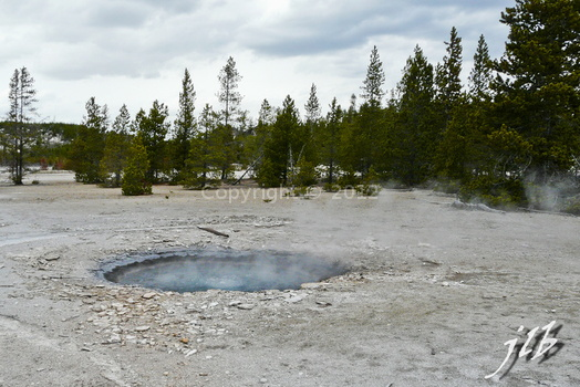 Lower geyser basin-34