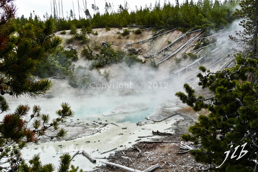 Lower geyser basin-35