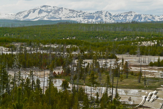 Lower geyser basin-38