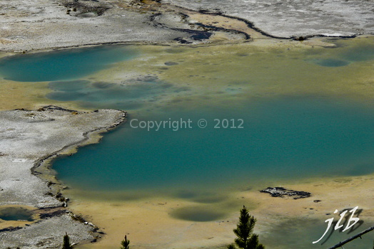Lower geyser basin-40