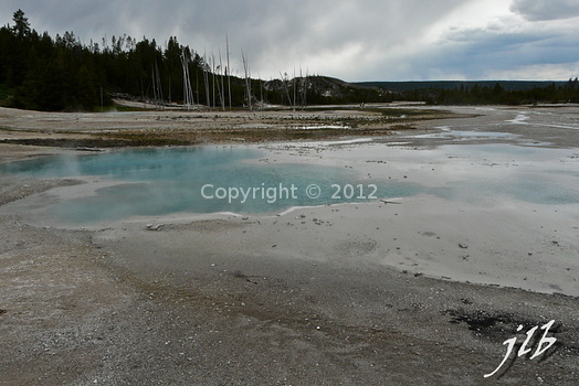 Lower geyser basin-44