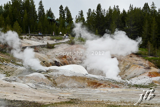 Lower geyser basin-45