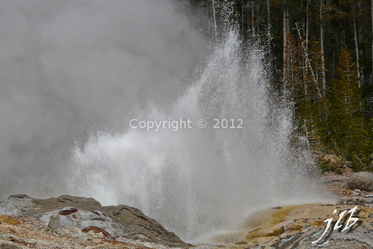 Lower geyser basin-5
