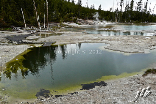 Lower geyser basin-51