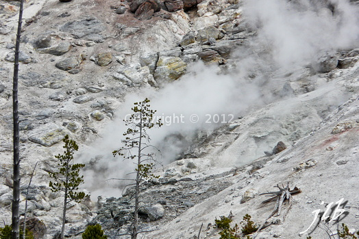 Lower geyser basin-7