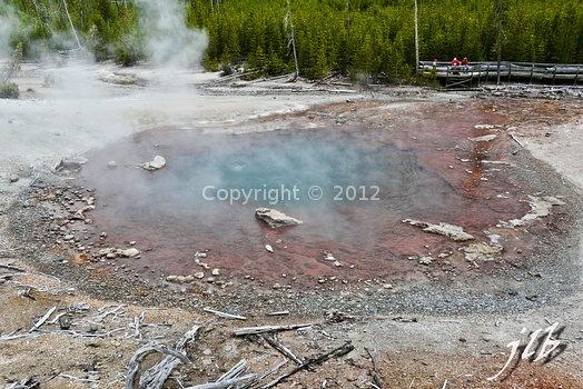 Lower geyser basin-8