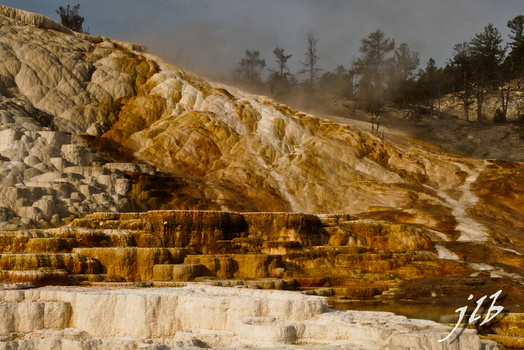 Mammoth hot springs-10