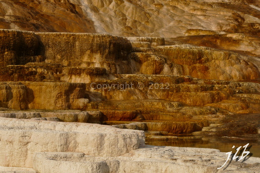 Mammoth hot springs-13