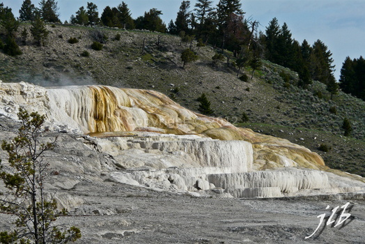 Mammoth hot springs-15