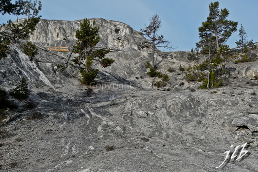 Mammoth hot springs-16