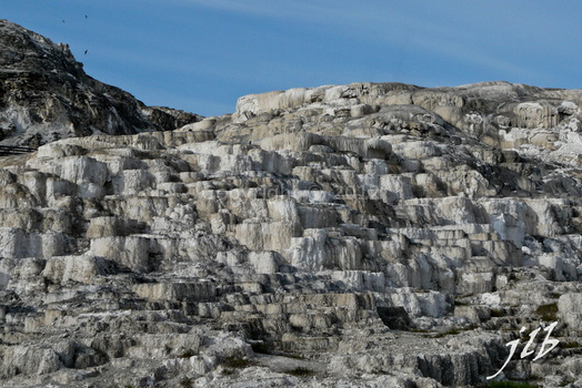 Mammoth hot springs-18