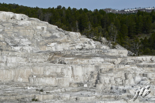 Mammoth hot springs-21