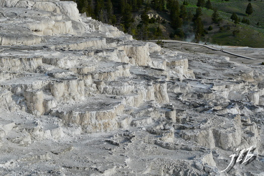 Mammoth hot springs-24
