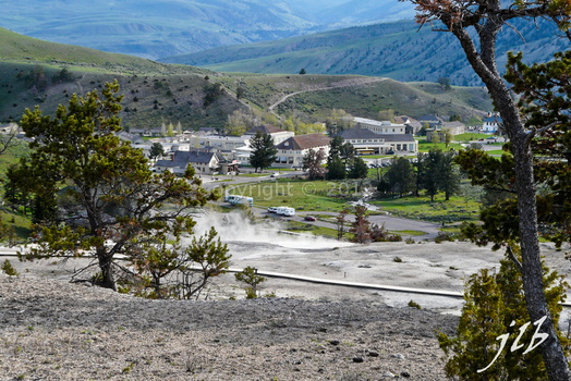 Mammoth hot springs-25