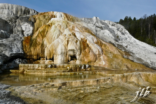 Mammoth hot springs-28