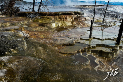 Mammoth hot springs-41