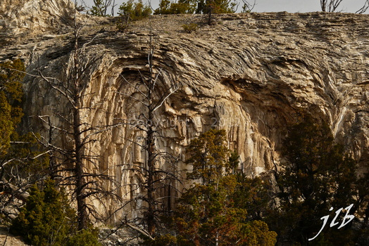 Mammoth hot springs-48