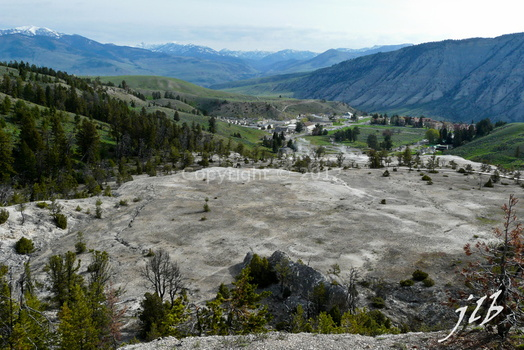 Mammoth hot springs-49