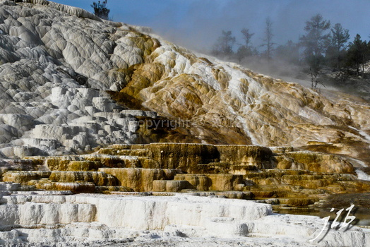 Mammoth hot springs-7
