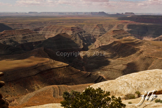 Muley point-3