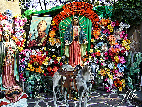 ND de Guadalupe-28