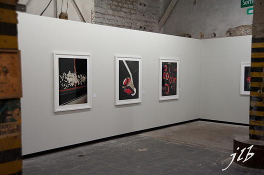 2010 Expo renc.d'Arles-11