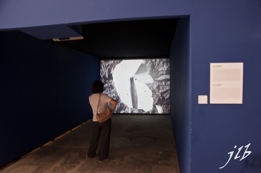 2010 Expo renc.d'Arles-21
