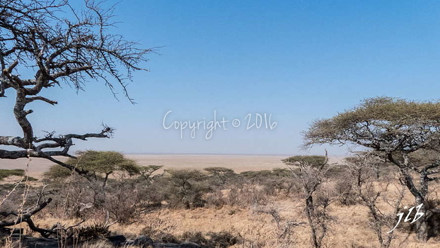 Centre SERENGETI-2