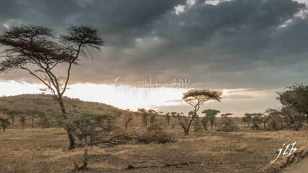 Centre SERENGETI-30