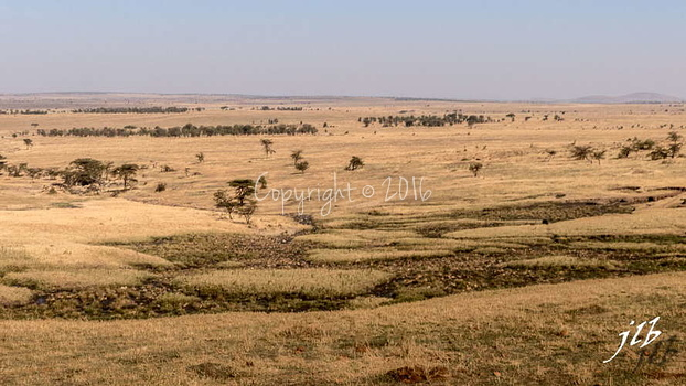 Centre SERENGETI-63