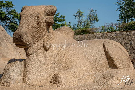 FIVE RATHAS à MAMALIPURAM-13