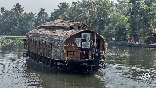 BACKWATERS - ALAPPUZHA-2