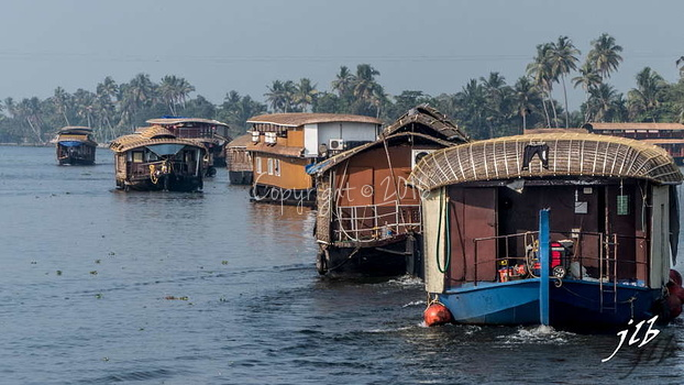 BACKWATERS - ALAPPUZHA-7