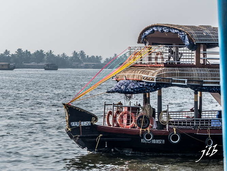 BACKWATERS - ALAPPUZHA-11