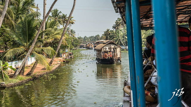 BACKWATERS - ALAPPUZHA-19
