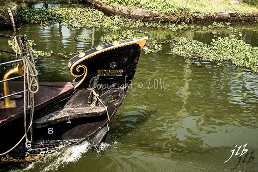 BACKWATERS - ALAPPUZHA-20