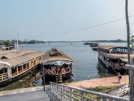 BACKWATERS - ALAPPUZHA-22