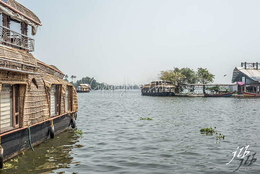 BACKWATERS - ALAPPUZHA-24