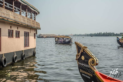 BACKWATERS - ALAPPUZHA-30