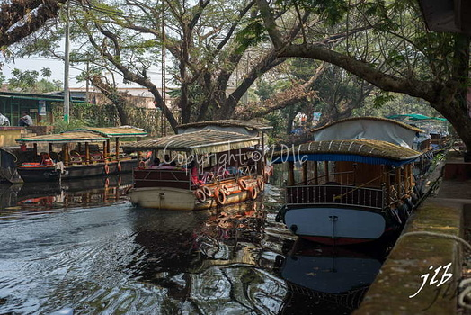 Le GRAND CANAL  - ALLEPPEY -5
