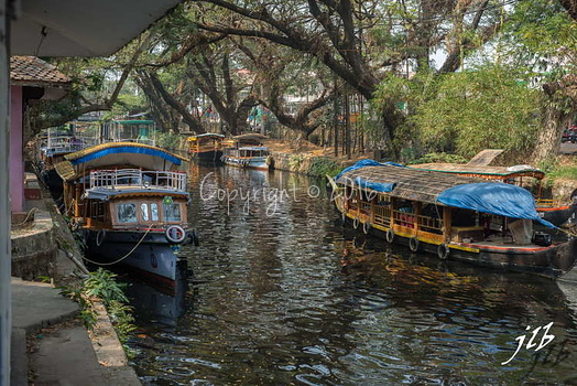Le GRAND CANAL  - ALLEPPEY -6