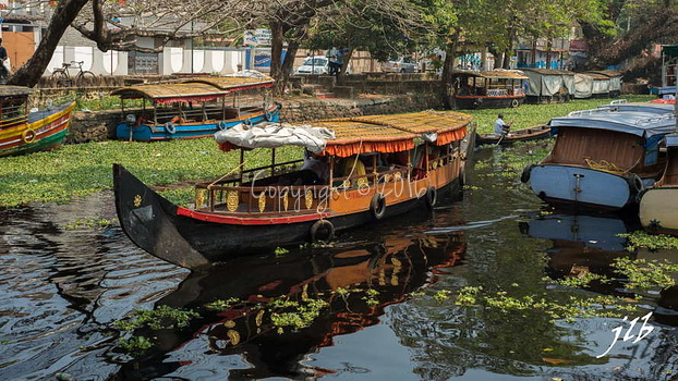 Le GRAND CANAL  - ALLEPPEY -7
