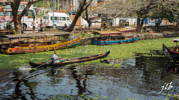 Le GRAND CANAL  - ALLEPPEY -8